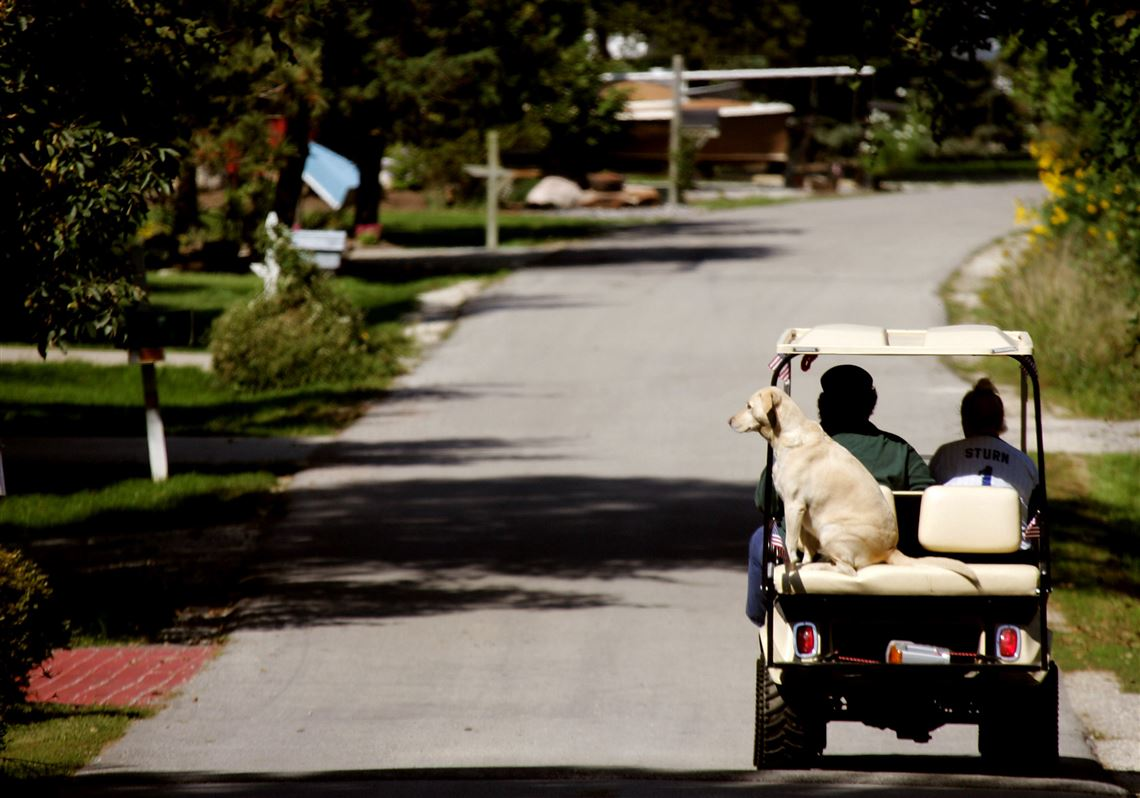 Golf carts OK'd for Toledo streets in some areas | Toledo Blade on