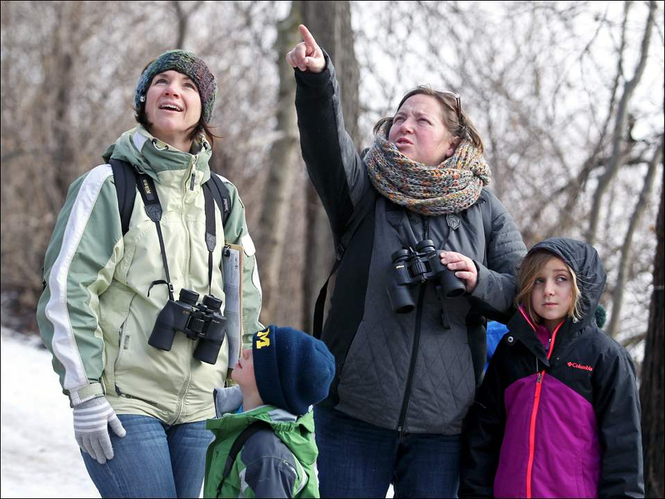 Kyle Ferrell of Stryker, Ohio, left, and son Oliver, 4, look for the bird pointed out by Sara Davis of Grand Rapids, Ohio, with daughter Phoebe, 7, during the annual Christmas Bird Count at Farnsworth Metropark in Waterville.