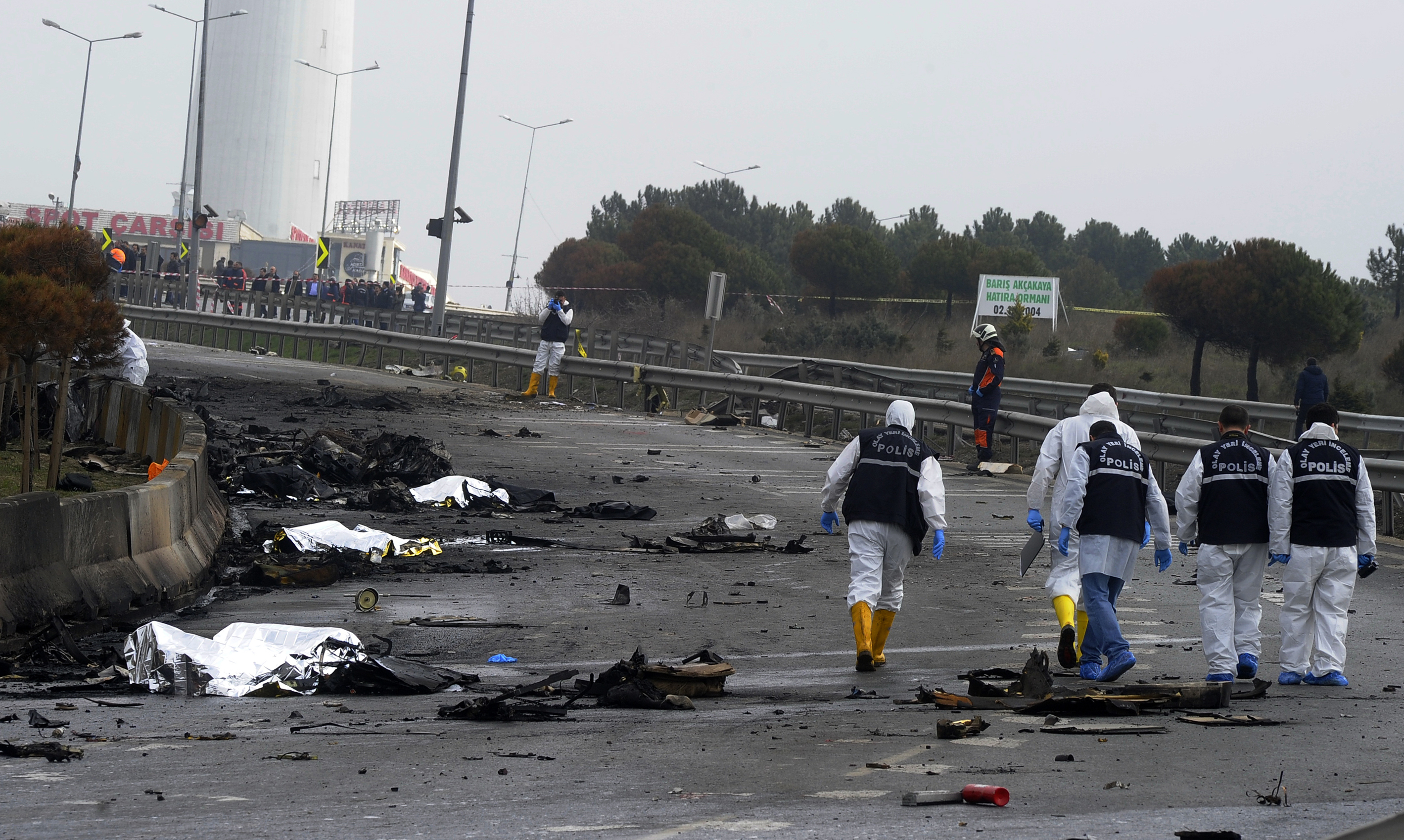 Russians killed in helicopter crash in Istanbul 19