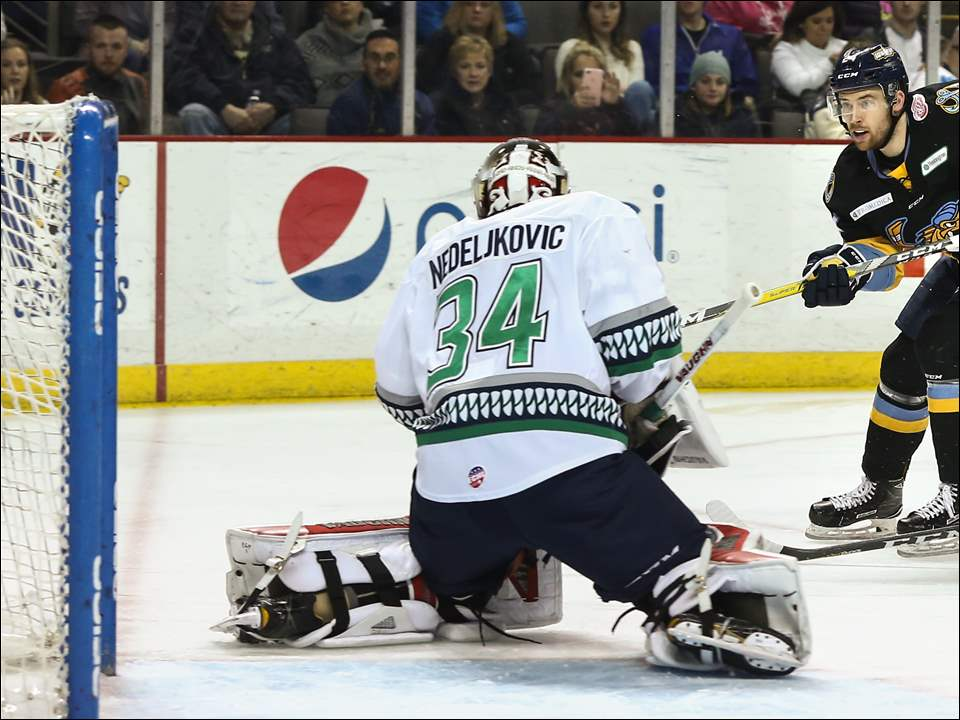 Walleye forward Tylor Spink scores against Florida goalie Alex Nedelijkovic during Saturday's game at the Huntington Center. The Walleye won, 8-2.