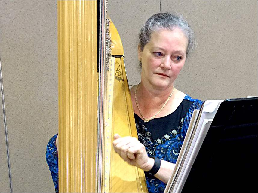 Harpist Julie Buzzelli plays at the Toledo Symphony League's annual Rite of Spring event.