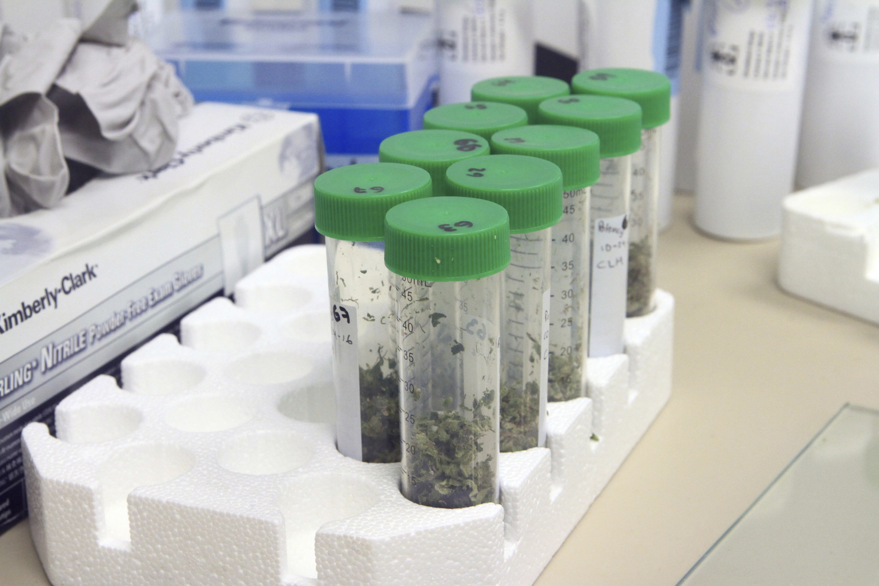 ohio rules for medical pot growers bring access questions