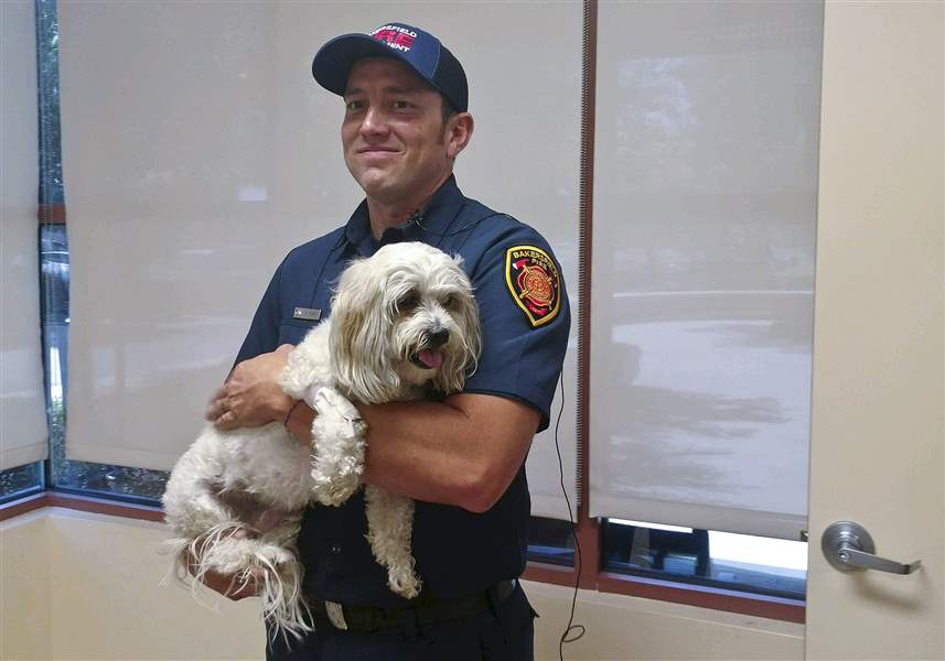 Firemen Rescue Pup From Burning House, Earn The Internet's Love