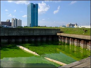 An algae bloom from Lake Erie on Sept. 21.