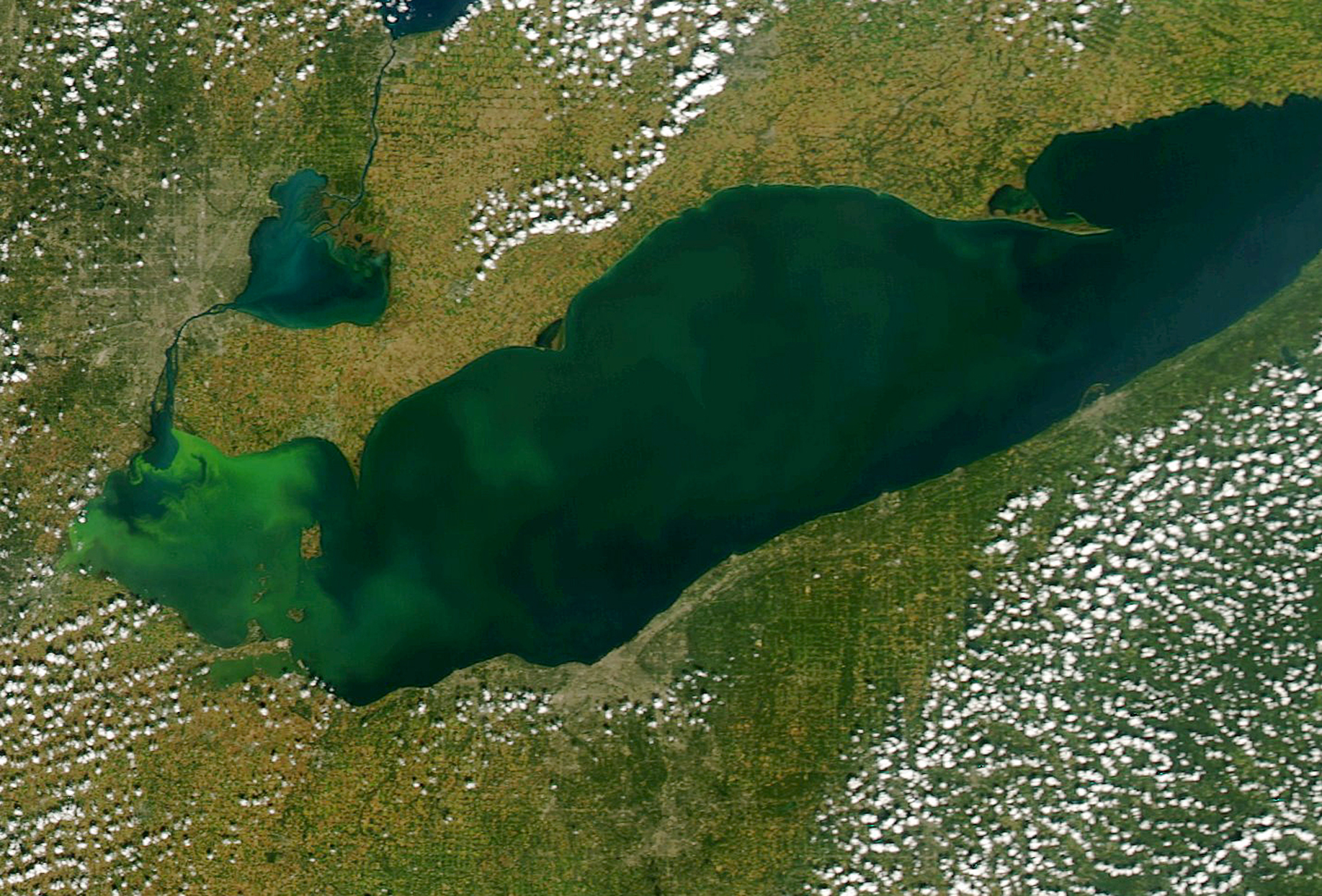 Algae Bloom Stretches To Canada But Toledo Water Safe To