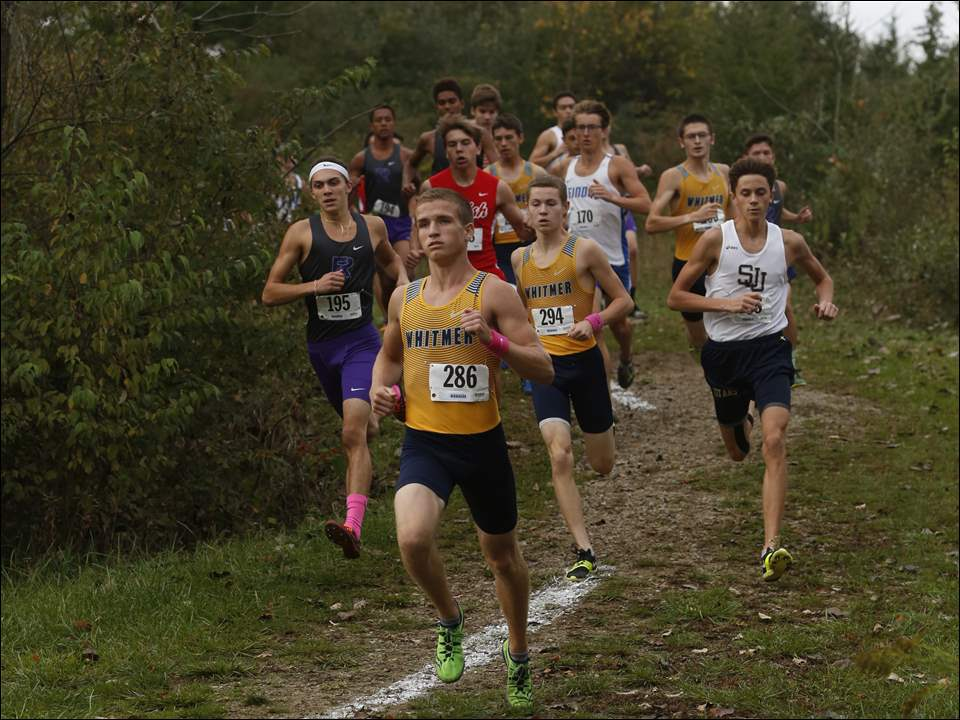 Nathan Cousino of Whitmer leads the pack at the Three Rivers Athletic Conference cross country championships at Walsh Park in Fremont.