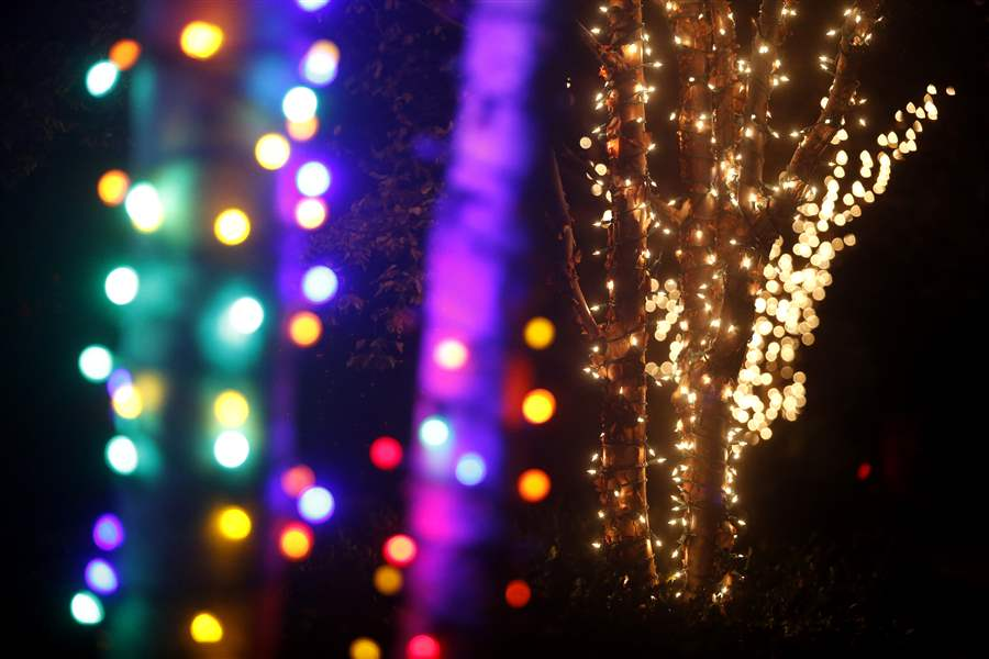 light decorations for the lights before christmas at the toledo zoo in toledo on tuesday november 14 - Toledo Zoo Christmas Lights