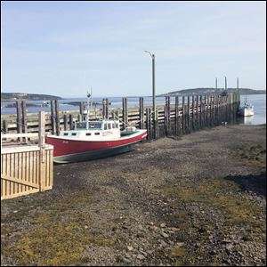 By low tide on the Bay of Fundy in New Brunswick, a boat can be sitting on dry land.