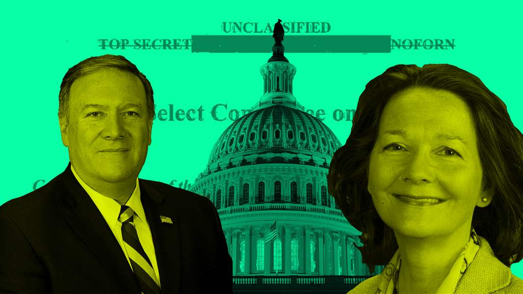 US Watchdogs Urge Senate to Screen Gina Haspel's 'Torture' Background