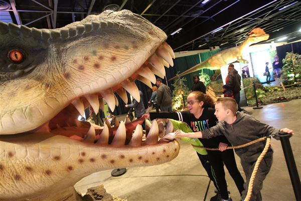 go back in time with discover the dinosaurs at seagate