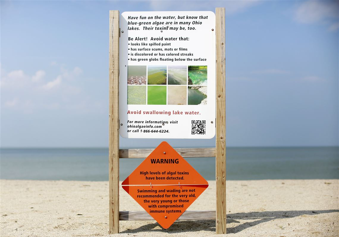 This September 2017 Photo Shows A Warning Sign For Algal Toxins On Beach In