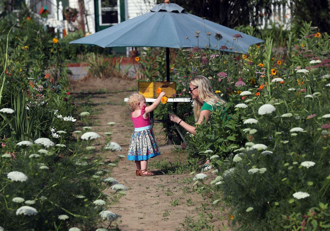 Gardenview Flower Farm Lets You Create Your Own Bouquet