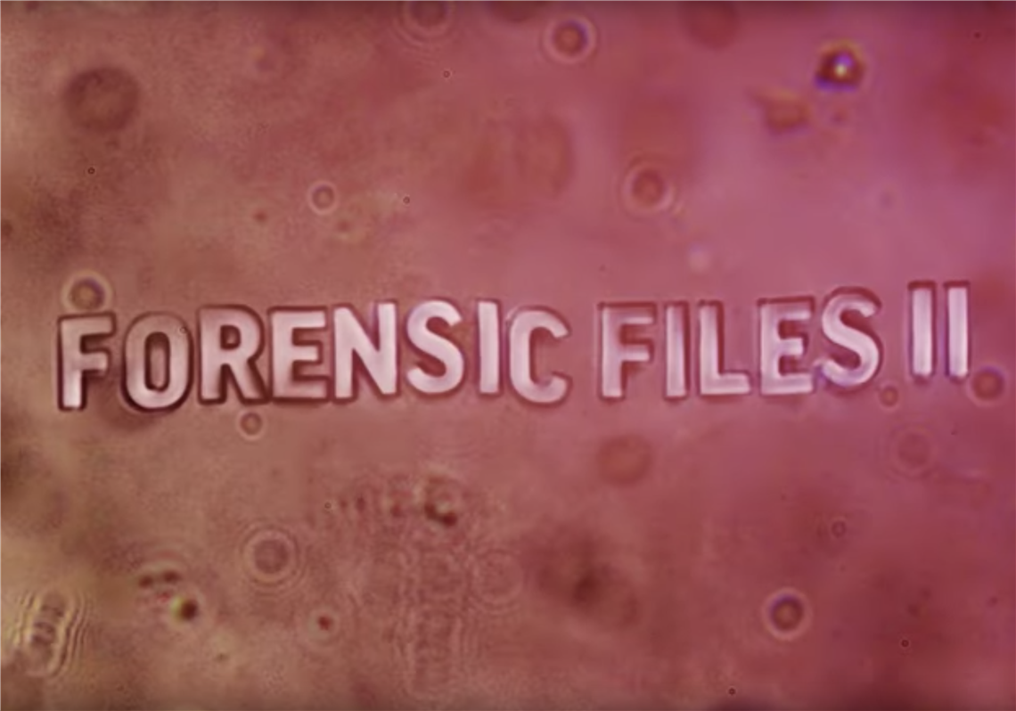 Forensic Files Ii Rekindles An Old Fave The Blade